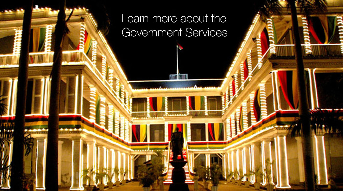 Learn more about the Government Services